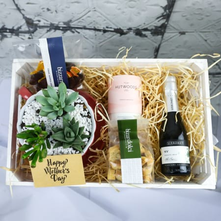Mother`s Day Succulent Hamper - Next Day Delivery